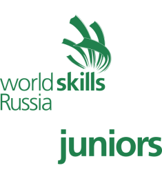 WorldSkillsRussiaJuniors